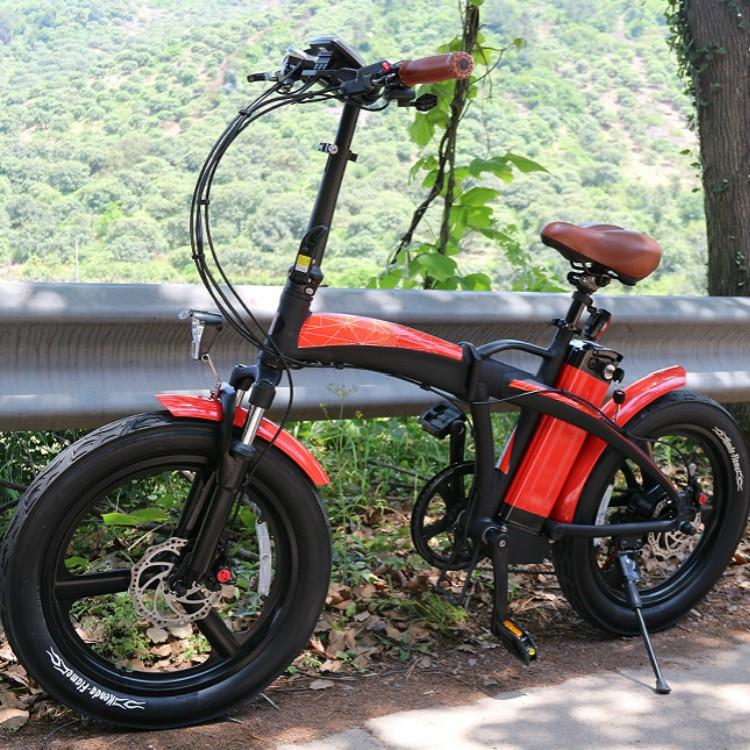 LEEF8620-1 Electric Folding Bike