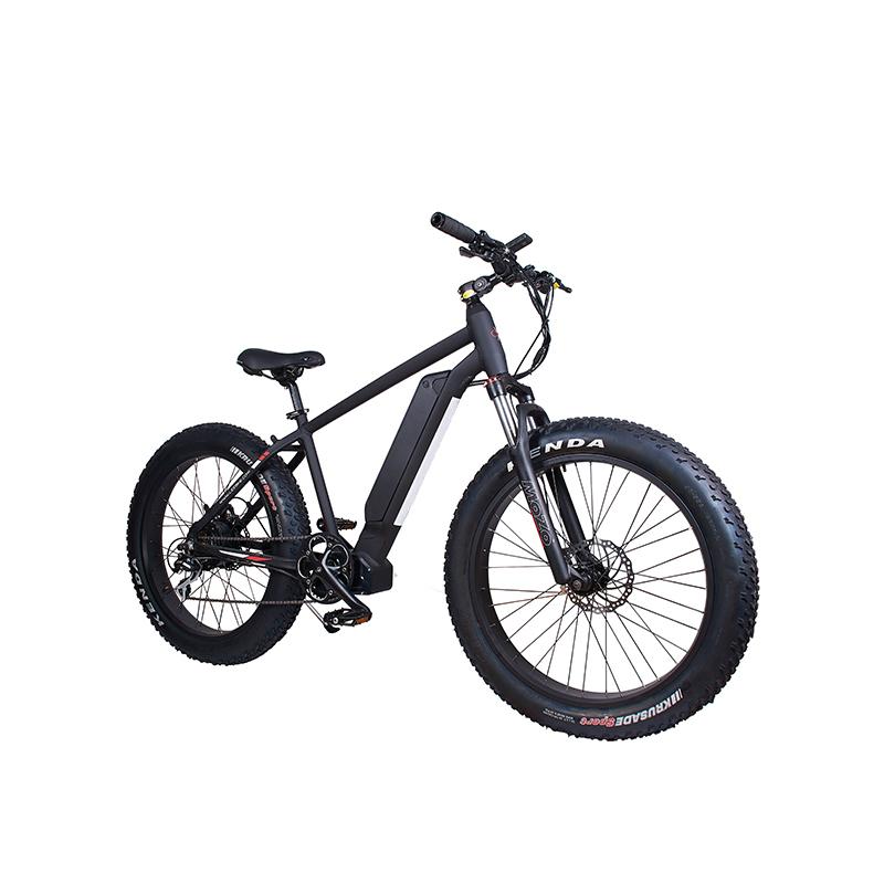 LEEM 2220-1 Moteur électrique haute puissance pour vélo de montagne