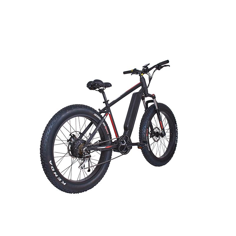 Moteur électrique haute puissance pour vélo de montagne LEEM 2220-1